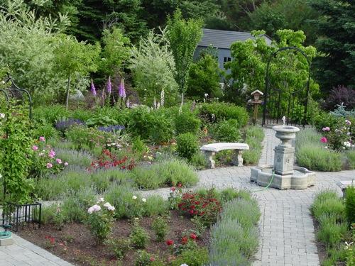 crosspaths_garden.jpg